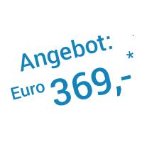 Angebot: 369,- Euro (zzgl. MwSt.)